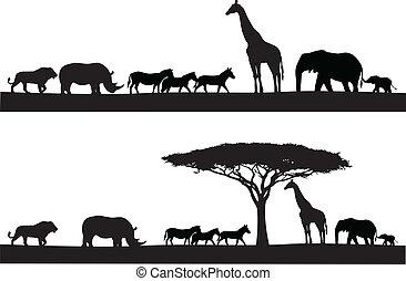 dyr, safari, silhuet