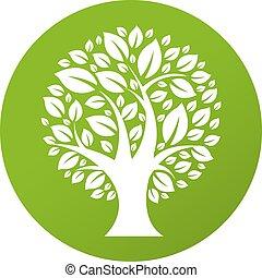 eco, symbol, træ