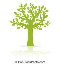 eco, træ