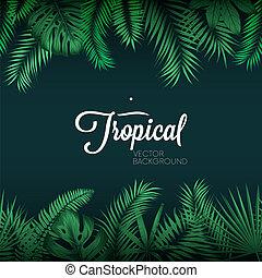 eksotiske, blade, tropisk, vektor, grøn baggrund, håndflade
