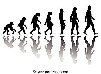 evolution, silhuet, mand