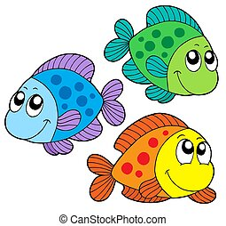 farve, cute, fisk