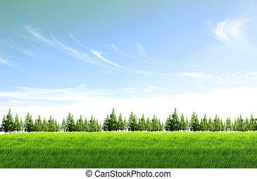 felt, baggrund, himmel blå, grønne