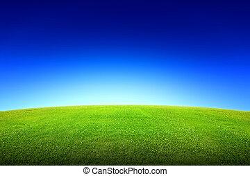 felt græs, himmel, grønne