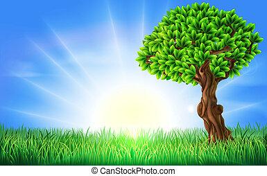 felt, solfyldt, træ, baggrund