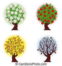 fire, æble, årstider, træ.