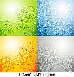 fire sæsoner, forskellige, træ