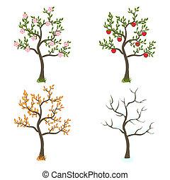 fire sæsoner, kunst, træer