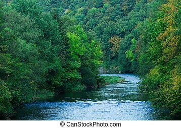 flod, skov, grønne