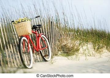 flowers., cykel