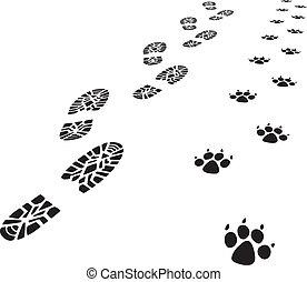fod, mand, vektor, printer, hund