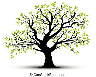 forår, blade, vektor, -, træ