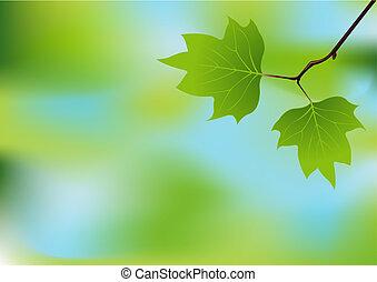 forår, branch, baggrund