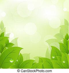 frisk, blade, grønne