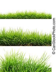frisk, græs, grønne, forår