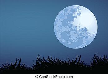 fuld måne, nat