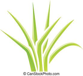 græs, grønne, blanke, ikon
