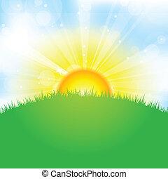 græs, himmel, sol