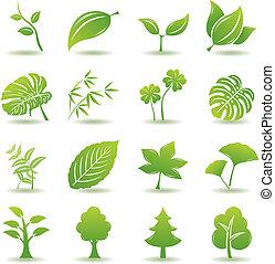 grønne, sæt, blad, iconerne