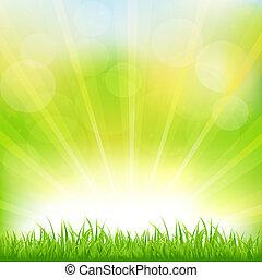 grønnes græs, sunburst, baggrund