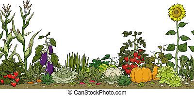 grønsag have, seng