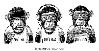 gravering, klog, speak., monkeys., vinhøst, tre, ikke, afhøre, se