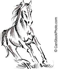 hest, illustration