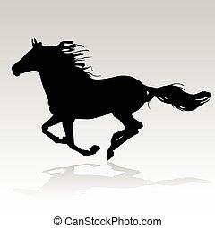 hest, løb