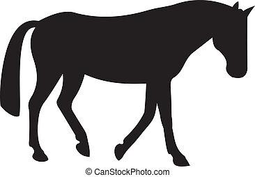 hest, vektor