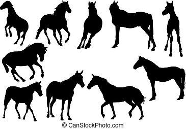 hest, vektor, silhuet, illustration