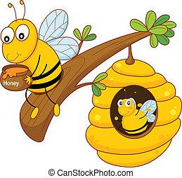 honning kæmm, bi