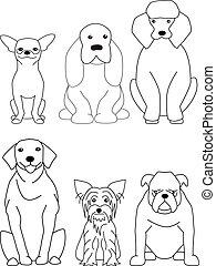 hund, samling