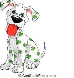 hund, st.., smil, dag, patrick's, cute