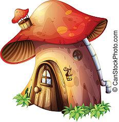 hus, svamp