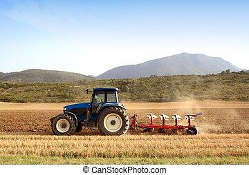 hvede, felter, kornsort, landbrug, pløje, traktor