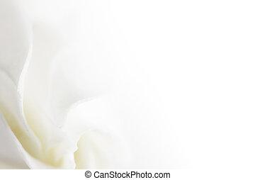 hvid blomstr, blød, baggrund