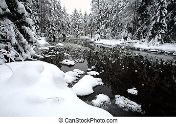 hvid, vinter landskab