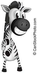hvid, zebra, baggrund