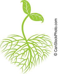 i tiltagende, plante