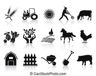 iconerne, sort, sæt, agerjord, landbrug