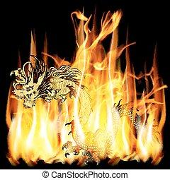 ild, gylden, kinesisk drage