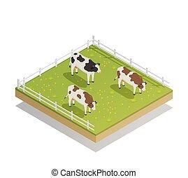 isometric, græsgang, mejeri, komposition