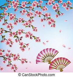 japansk, -, vektor, blomstre, kirsebær, baggrund, smukke, åbn, fans., træ, sakura, ornamental, illustration, to