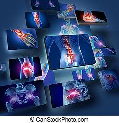 joints, begreb, menneske