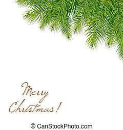 jul, branch, træ