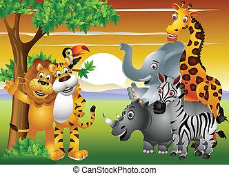 jungle, dyr, cartoon