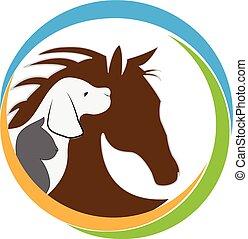 kat, logo, hund, hest