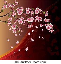 kirsebær træ, baggrund