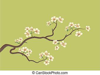 kirsebær træ, japansk