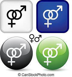 knapper, vektor, mandlig, kvindelig